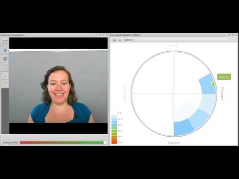 FaceReader- Facial expression analysis - Circumplex model of affect