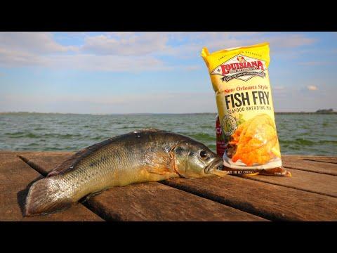 Turning This AQUARIUM FISH Into A Tasty Sammich!