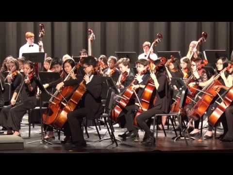 2017 All Middle Tennessee 7th and 8th Grade String Orchestra