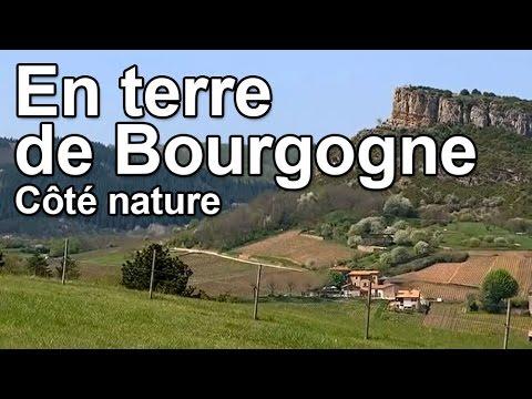 En terre de Bourgogne - Côté Nature