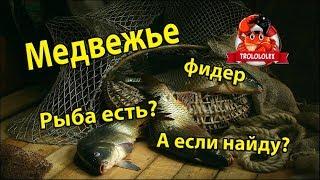 Русская рыбалка 4. Озеро Медвежье ( медвежка ). Как ловить на патерностер? Russian fishing 4