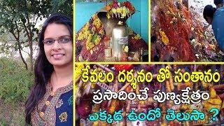 Nagula chavithi celebrations in Famous temple || Mopidevi temple ||Santhanam kalgalante visit temple