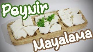 Evde peynir yapımı - Köy peyniri nasıl yapılır - Püf noktaları