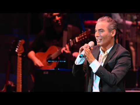 Pitingo - A Puro Dolor (Letra Y Musica: Omar Alfanno)