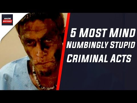 5 Most Mind Numbingly Stupid Criminal Acts