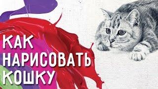 Как нарисовать кошку и сделать рисунок особенным? Советы как нарисовать кошку.(http://goo.gl/5uD3TJ Как нарисовать кошку. Записаться на конференцию ..., 2016-01-19T05:49:36.000Z)