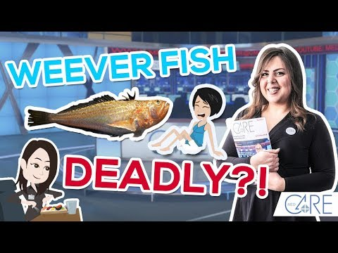 Summer Spoiler Alert: Watch Out For The Weever Fish!