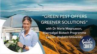"""Green pest offers greener solutions"" with Dr Marie Magnusson, Macroalgal Biotech, Waikato Uni"