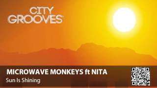 Microwave Monkeys ft Nita: Sun Is Shining
