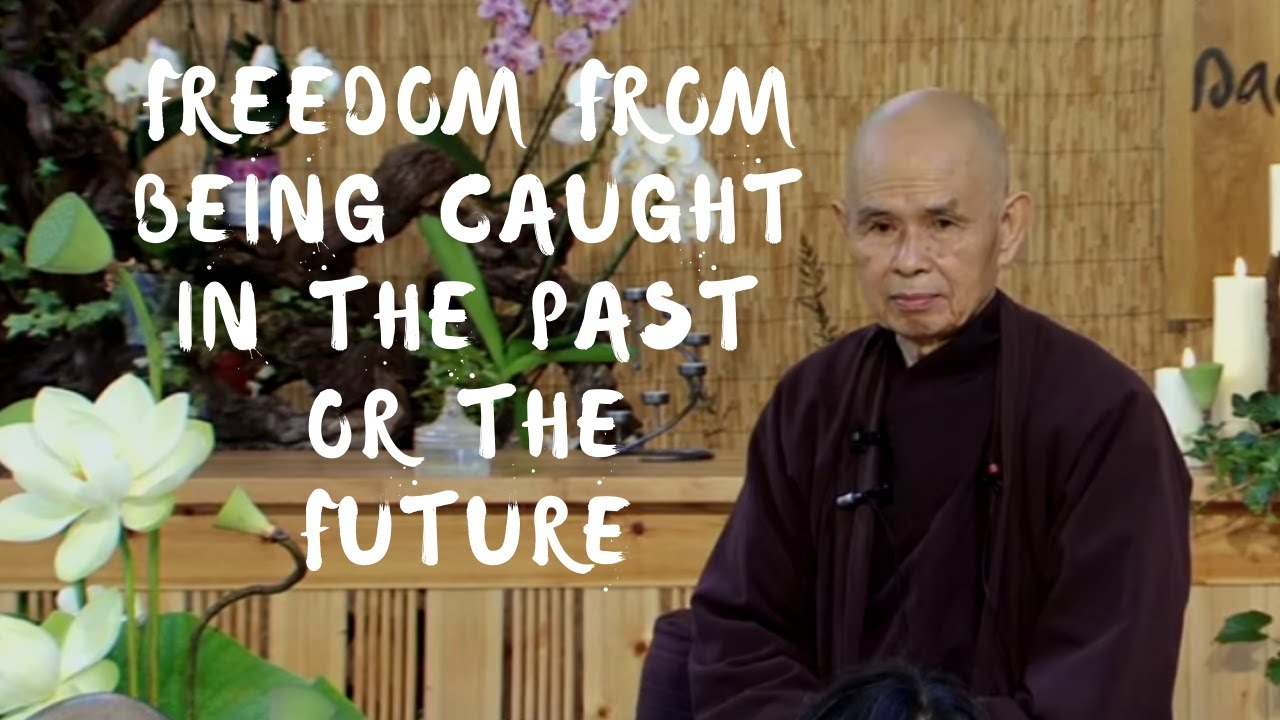 Download Freedom from Being Caught in the Past or the Future | Dharma talk by Thich Nhat Hanh, 2014.07.26