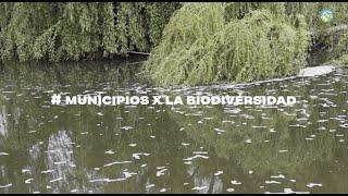 #MunicipiosXLaBiodiversidad Peñaflor