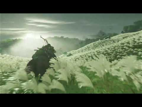 Genki Arcade capture demo of Ghost of Tsushima