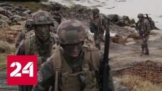 Арктические мучения: НАТО попыталось бросить вызов России в Арктике - Россия 24