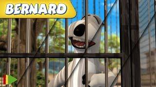 Bernard Bear | Zusammenstellung von Folgen | Der Tierpark 1