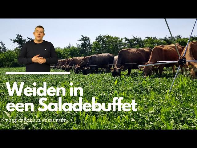 How to: Weiden in een Saladebuffet l Kruidenrijk Grasland