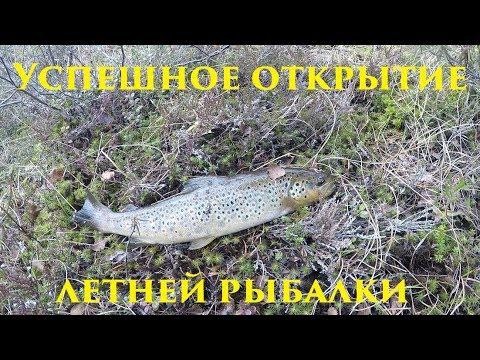 Видео открытие рыбалки