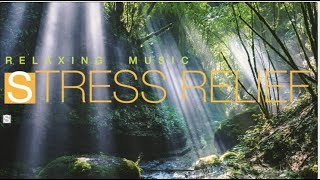 SPA MASSAGE RELAXING MUSIC / Stress Relief Music