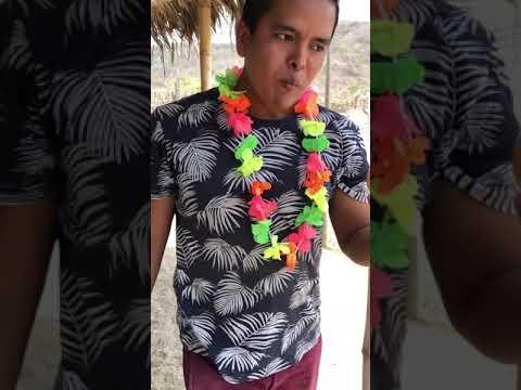 Les Traigo Golosinas desde Hawai a mIs Animalitos