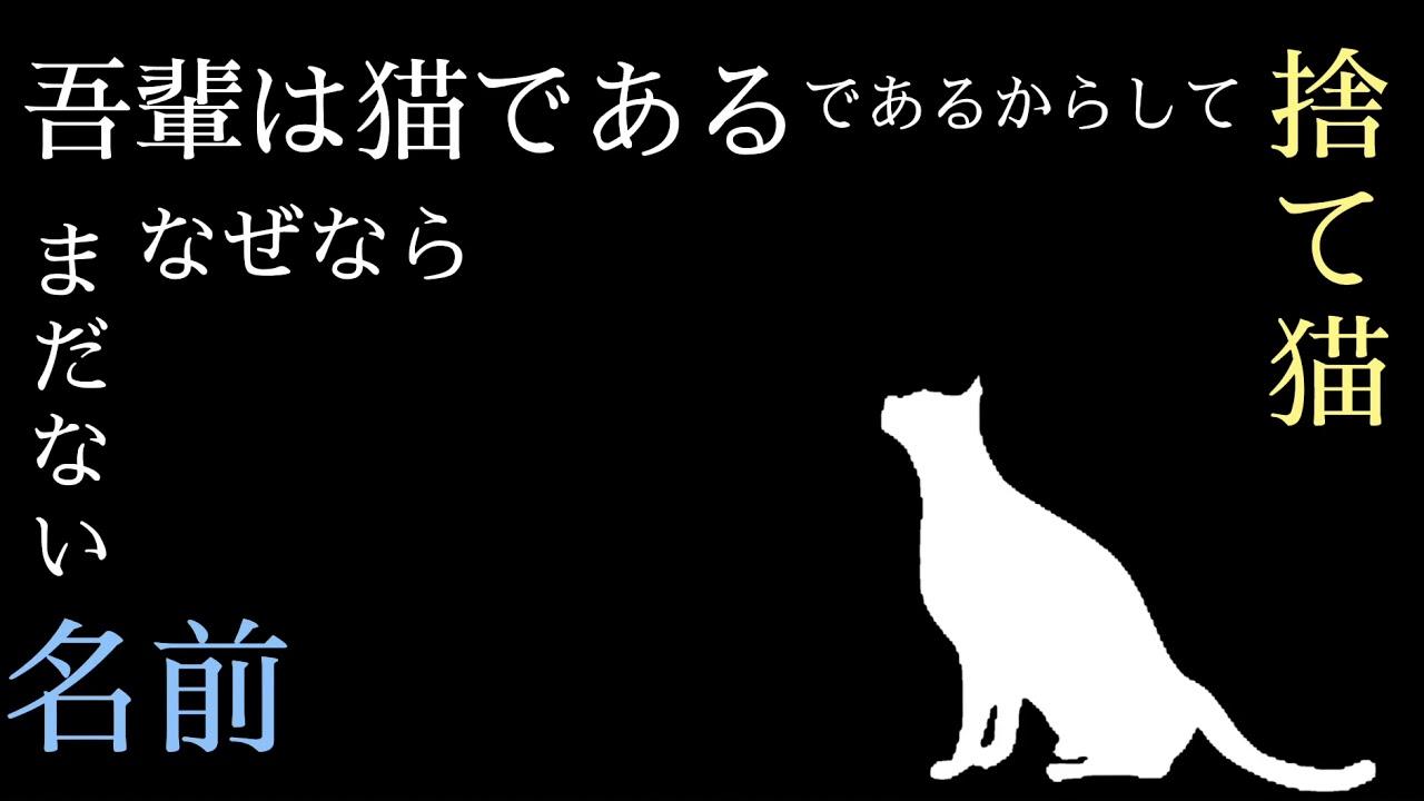 吾輩 は 猫 で ある