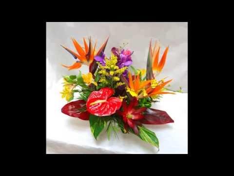 birds-of-paradise-flower-arrangement