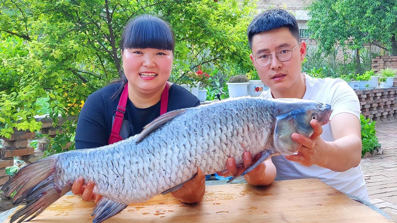 【陕北霞姐】亮亮100元钓12斤大青鱼,霞姐大刀斩大鱼,炖的嫩嫩的,吃起来猛香了!