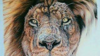 How to Draw Realistic Lion Mane - Remrov Pencil Artist