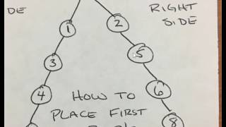 Network Marketing 101 - How to Place People in a Binary