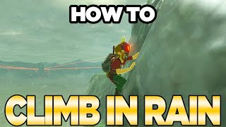 Infinite Climb Mountains In Rain Exploit in Breath of the Wild | Austin John Plays