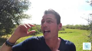 HOW TO OVERCOME A BUG FLYING IN YOUR MOUTH AND WIN YOUR DAY!