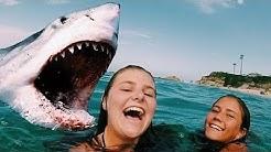 Die 5 Tödlichsten Haiangriffe - Mit Kamera aufgenommen!