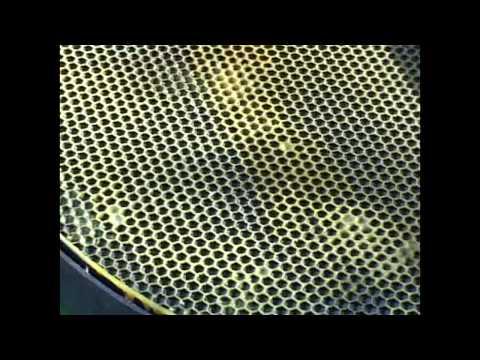 A műanyag műlépek bevonása méh viasszal