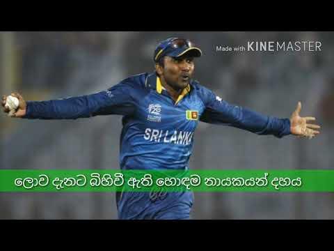 ලොව දැනට බිහිවී ඇති හොදම ක්රිකට්  නායකයන් 10/world top ten successful cricket captains