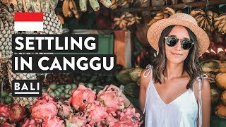 SETTLING IN CANGGU FOR A MONTH | Bali Digital Nomad | Indonesia Travel Vlog