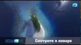 Документальный сериал - Тайны Тихого Океана