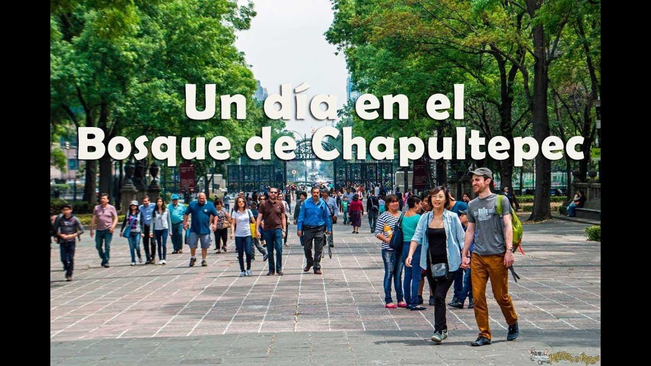 De Paseo En El Bosque De Chapultepec Ciudad De Mexico Youtube