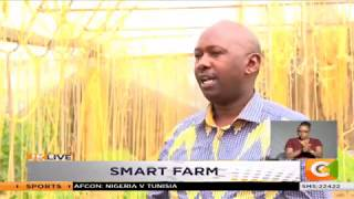 | SMART FARM | Greenhouse Farming