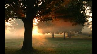 Paul van Dyk feat. Plumb - I Don