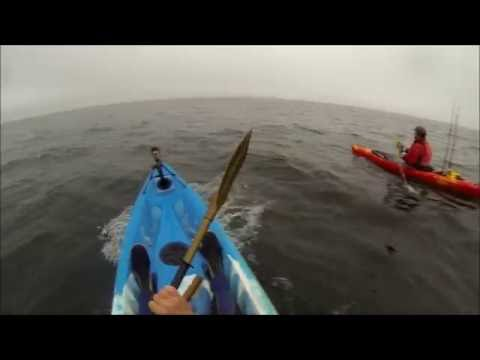 Scottish Kayak Fishing. Part 49. Ling And Cod From Berwick, Early Morning Start With Demetrius.