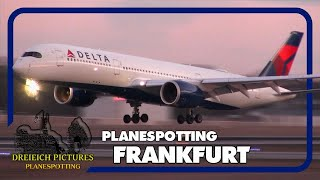 Planespotting Frankfurt Airport   Januar 2019   Teil 2