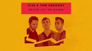 VIZE & Tom Gregory - Never Let Me Down (Visualizer) [Ultra Music]