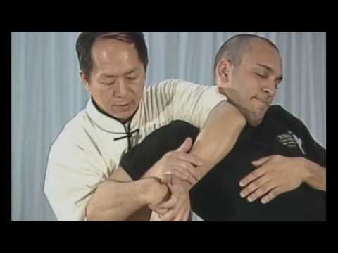 Martial Arts Techniques streaming vf