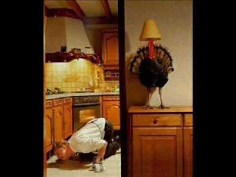 Bob & Tom Classics - Mr. Obvious - The Turkey