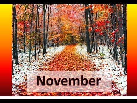 Leo October Mid-month-November 2016 General and Love Reading~Unexpected Declaration of Affection