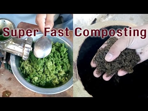 super-fast-way-of-making-compost-at-home---how-to-make-compost-from-fruits-peals