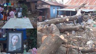 Mahasiswi Tewas Tertimpa Pohon - Kota Kupang