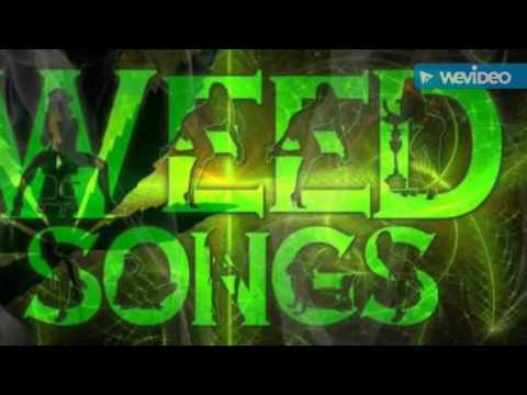 KANNADA NEW WEED SONG