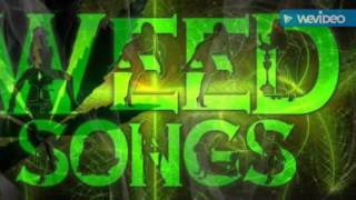 KANNADA NEW WEED SONG