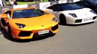 Raduno 50° Lamborghini VIPERNOLO