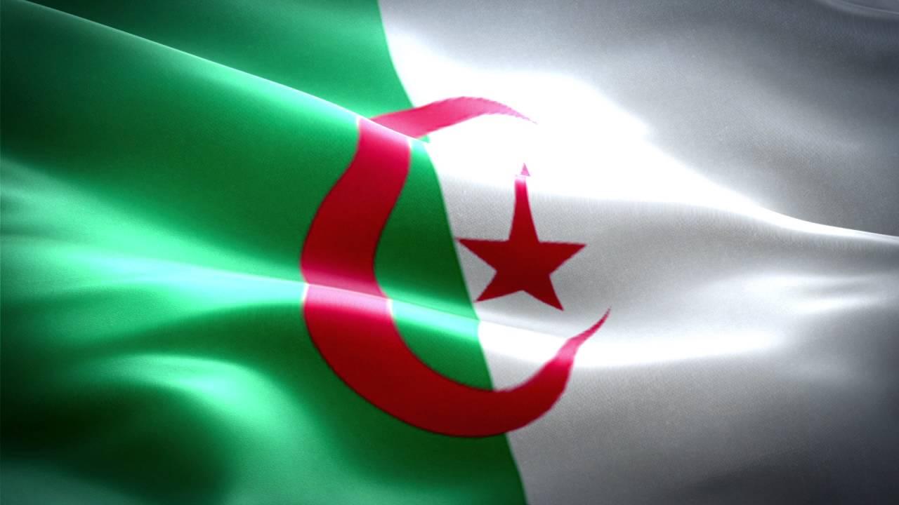 علم الجزائر Algeria flag