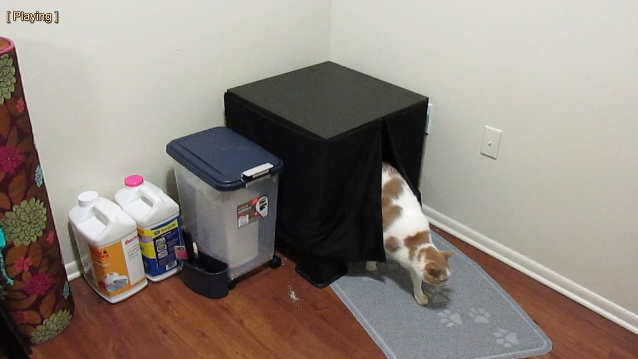 Make Cat Furniture Litter Box Using IKEA Lack Table In 5 Minutes For $16 21
